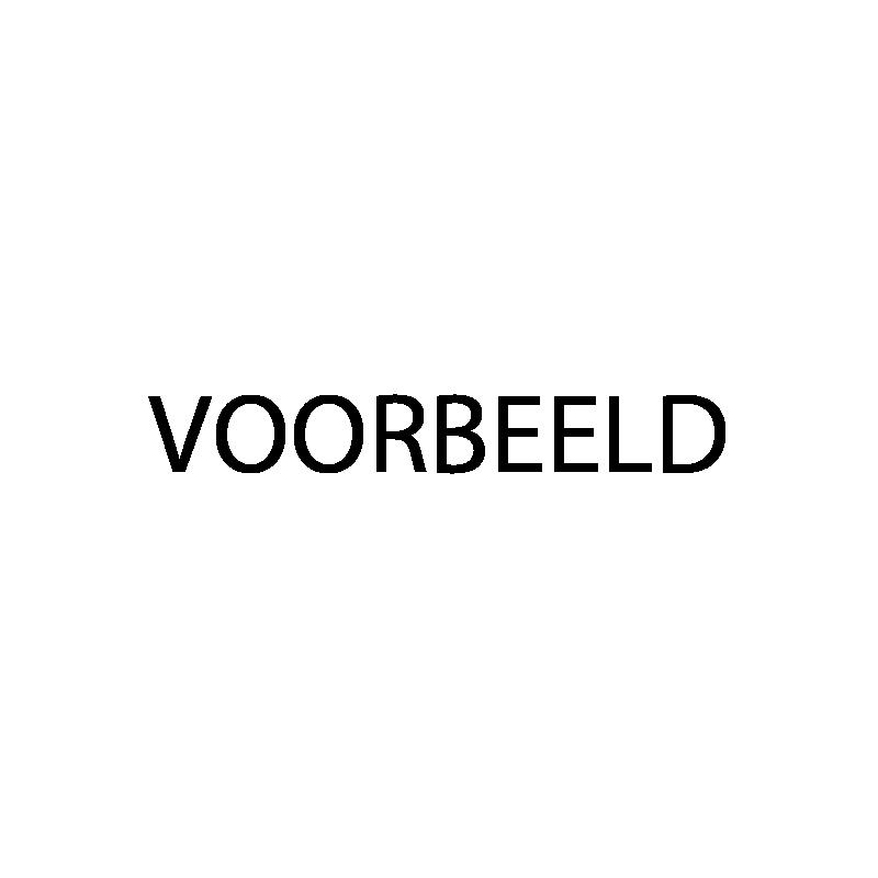 Sponsoren_voorbeeld